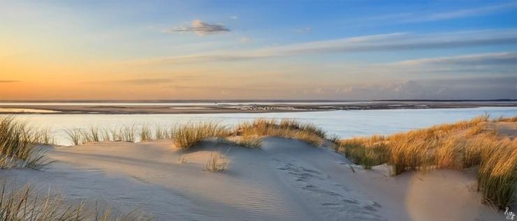 photo Dune du Pyla